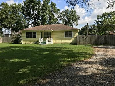 Porter Single Family Home For Sale: 23617 Ford Road