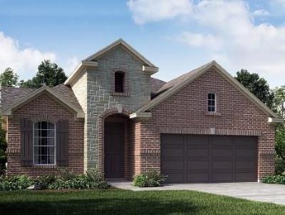 Rosenberg Single Family Home For Sale: 2203 Silver Canyon Lane