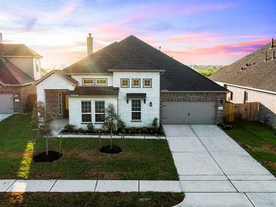 Katy Single Family Home For Sale: 6814 Regal Lakes Drive
