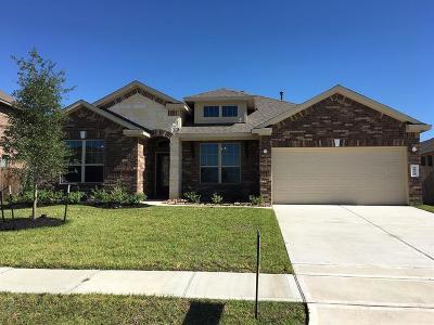 Katy Single Family Home For Sale: 4814 Vergano Villa Drive