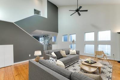 Houston Condo/Townhouse For Sale: 807 Saulnier Street