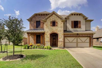 Tomball Single Family Home For Sale: 22319 Hillington Court
