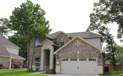 Tomball Single Family Home For Sale: 31335 Polaris Boulevard