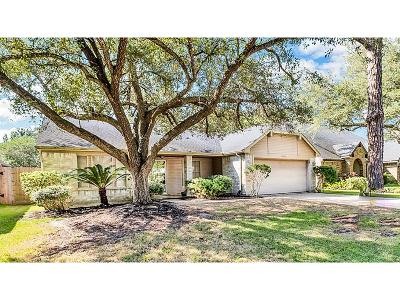 Pearland Single Family Home For Sale: 2518 Foxden Drive