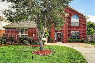 Pearland Single Family Home For Sale: 5806 Little Grove Drive
