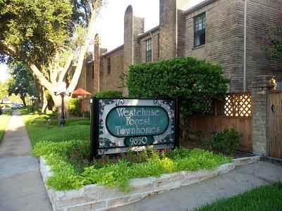 Houston Condo/Townhouse For Sale: 9850 Pagewood Lane #907