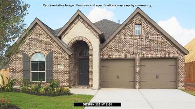 Rosenberg Single Family Home For Sale: 1355 Mystic River Lane