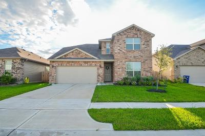 Katy Single Family Home For Sale: 2510 Northern Great White Ct