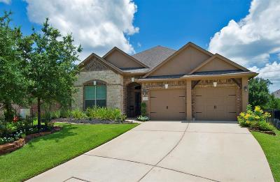 Tomball Single Family Home For Sale: 15 Handbridge Place