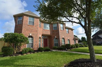 Friendswood Single Family Home For Sale: 508 Falcon Lake Drive