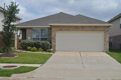 Katy Single Family Home For Sale: 26426 Richwood Oaks Oaks Drive