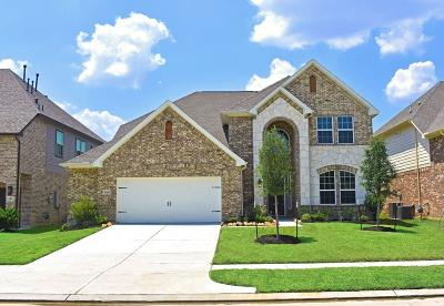 Rosenberg Single Family Home For Sale: 1106 River Delta Lane