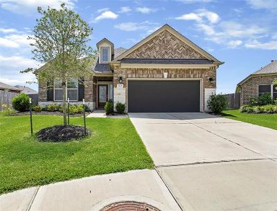 Katy Single Family Home For Sale: 5227 Lineage Drive
