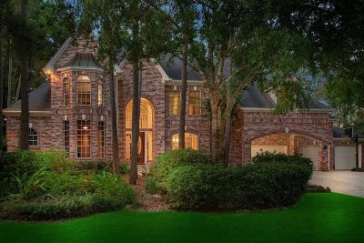 The Woodlands Single Family Home For Sale: 42 Meadow Brook Place