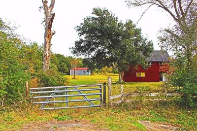 Waller Farm & Ranch For Sale: Fm 1488 And Fm 362 N