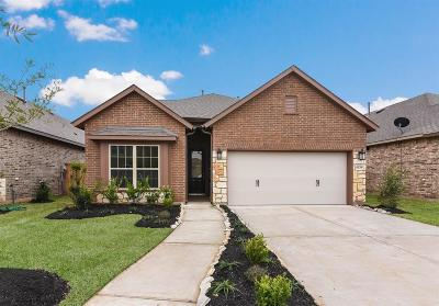 Fulshear Single Family Home For Sale: 2803 Blue Mist Bend