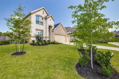 Montgomery Single Family Home For Sale: 203 Clementine Court