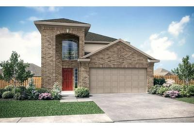 Houston Single Family Home For Sale: 12503 King Harry Drive