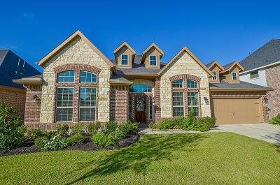 Rosenberg Single Family Home For Sale: 9410 Wheatfield Lane