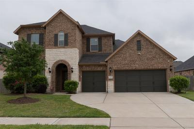 Katy Single Family Home For Sale: 26827 Mare Shadow Lane