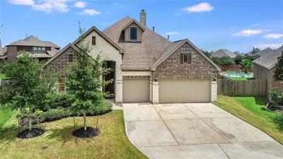 League City Single Family Home For Sale: 1335 Elkins Hollow Lane