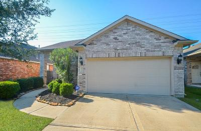 Katy Single Family Home For Sale: 26319 Richwood Oaks Drive