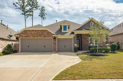 Single Family Home For Sale: 3309 Lockshire Ridge Court