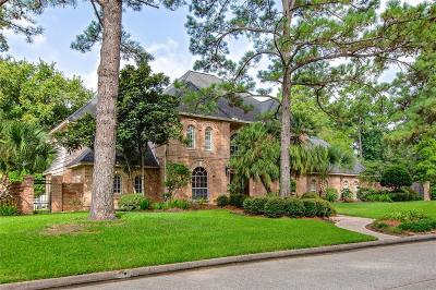 Houston Single Family Home For Sale: 2019 Riverglen Forest Drive