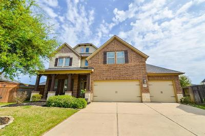 Fulshear Single Family Home For Sale: 6207 Holly Oaks Court