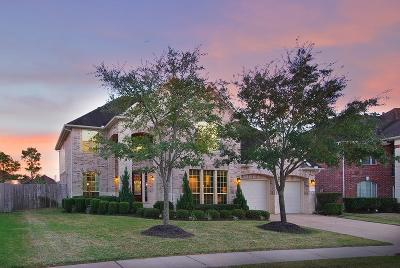 Shadow Creek Ranch Single Family Home For Sale: 2309 Bending Spring Drive