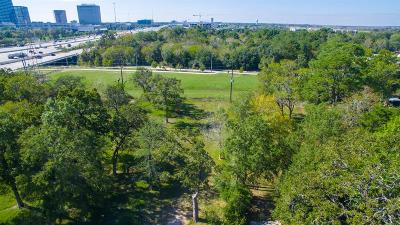 Residential Lots & Land For Sale: 1009 Blackhaw Street