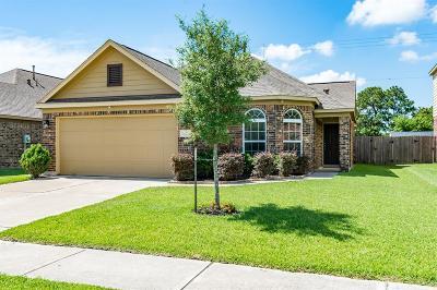 Harris County Single Family Home For Sale: 5223 El Tigre Lane