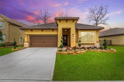 Sugar Land Single Family Home For Sale: 4818 Bellwood Springs