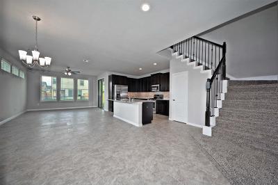 Rosenberg Condo/Townhouse For Sale: 3415 Rainflower Springs Lane