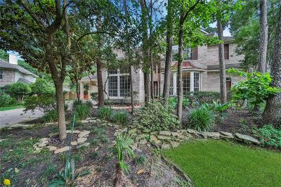 Montgomery County Single Family Home For Sale: 19 Verdant Valley Place