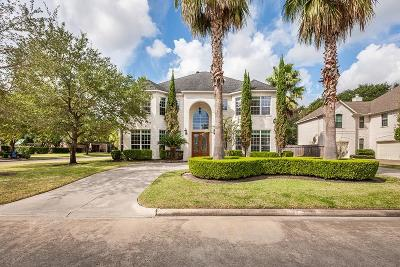 Houston Single Family Home For Sale: 3903 Pinesbury Drive