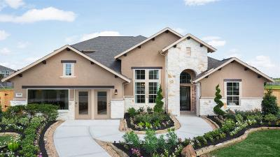 League City Single Family Home For Sale: 4706 Eagle Cove Lane