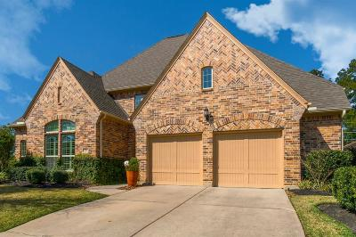 Tomball Single Family Home For Sale: 53 Sundown Ridge Place