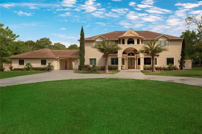 Montgomery Single Family Home For Sale: 11538 Vintage Oaks Drive