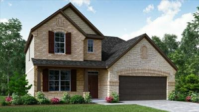Pearland Single Family Home For Sale: 12808 Oak Falls Drive