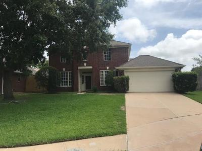 Single Family Home For Sale: 16019 Biscayne Shoals Drive