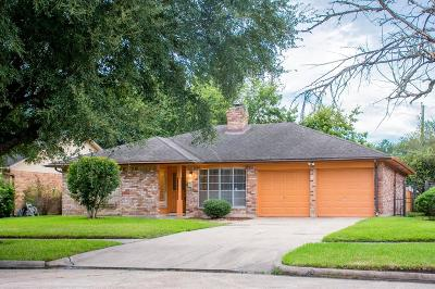 Houston Single Family Home For Sale: 3819 Belgrade Drive