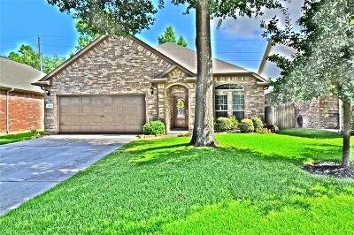 Magnolia Single Family Home For Sale: 7306 Casita Drive