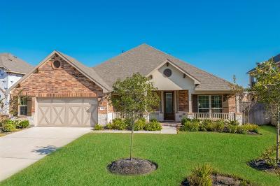 Lakes Of Savannah Single Family Home For Sale: 4807 Alaina