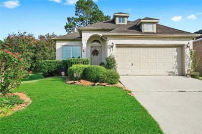 Single Family Home For Sale: 107 Fairway View Court