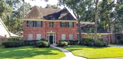 Houston Single Family Home For Sale: 4006 Aspen Mountain Trail