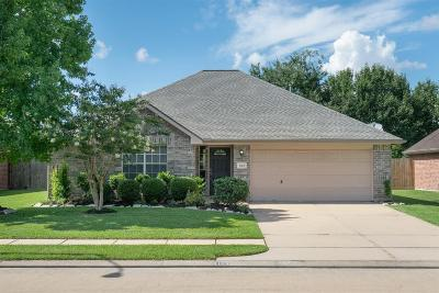 Pearland Single Family Home For Sale: 5103 Caprock Drive