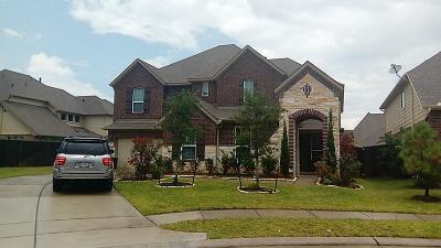 Katy Single Family Home For Sale: 27138 Latigo Lane