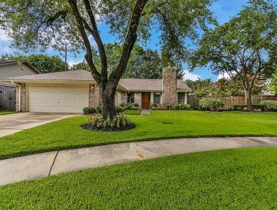 Houston Single Family Home For Sale: 12006 Hedgedown Drive