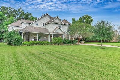 Missouri City Single Family Home For Sale: 3903 Ramble Creek Drive